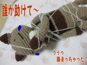 image07041.jpg