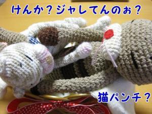 image07072.jpg