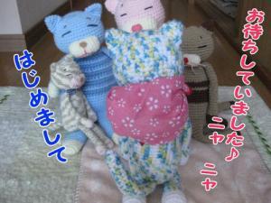 image08101.jpg