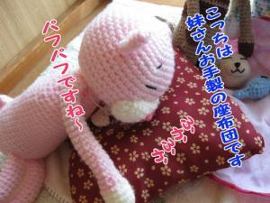 image08105.jpg