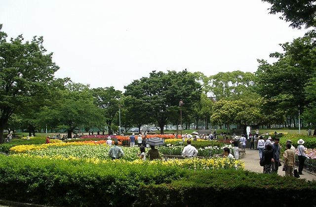 DSCN1822千種公園