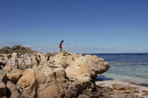 ロットネス島のヒロキ(仮称)