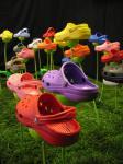 Crocs Pictures 4 132