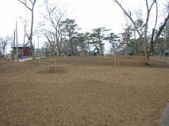 3.31芦野公園 整備2
