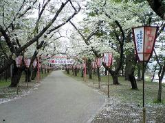 s-b-2008.4.29芦野公園5