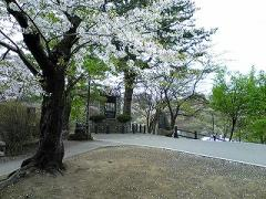 s-b-2008.4.29芦野公園3