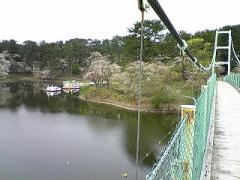 s-b-2008.4.29芦野公園2