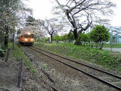 s-b-2008.4.29芦野公園7