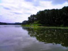 s-b2008-6.28芦野公園清掃