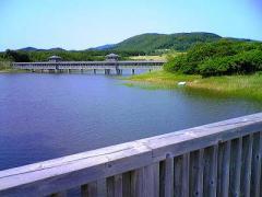 s-b2008-6.28大沼公園 1