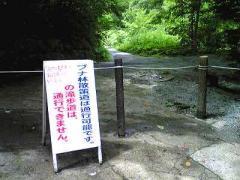 2008白神1s_b2008-400
