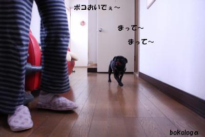 b426.jpg