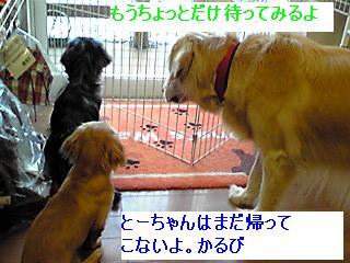 GRP_0004_20080512213755.jpg