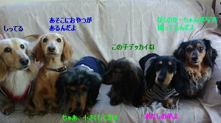 GRP_0018.jpg