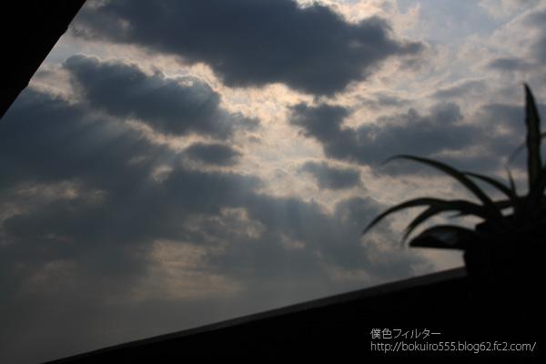 0730blog.jpg