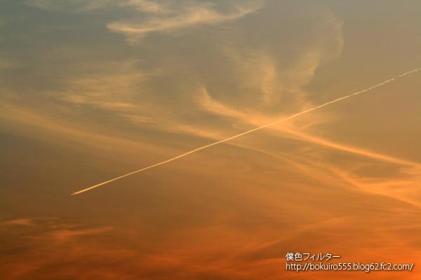 IMG_5519blog.jpg