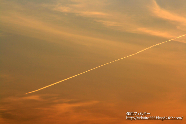 IMG_5521blog.jpg