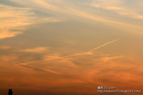 IMG_5525blog.jpg
