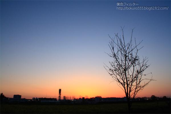IMG_5780blog.jpg