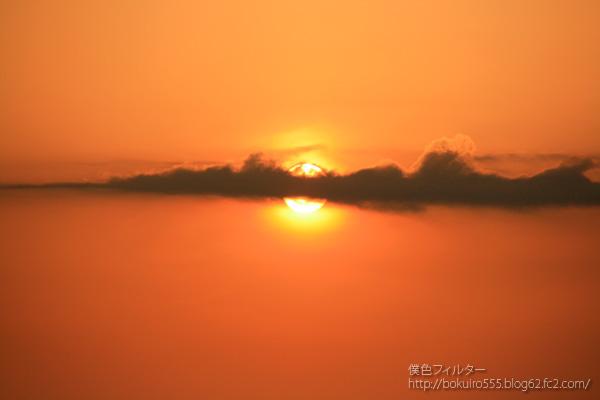 IMG_6910blog.jpg