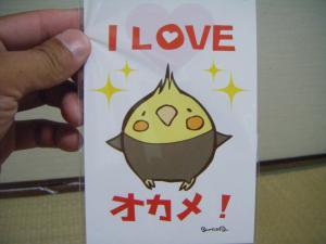 kosuke_20080803195532.jpg