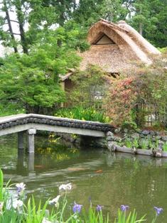 梅宮神社 庭3