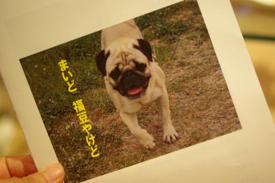 s-D渋谷 034