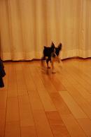 2008-04-07_23-27-38.jpg