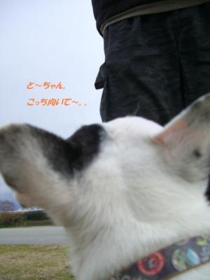 ☆2008 3月まで♪ 153