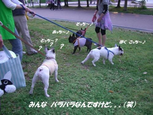 ☆2008 4 27ぼっくん♪誕生日会 050