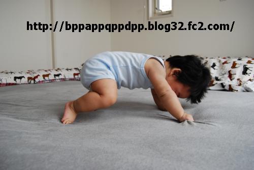 DSC_0191_convert_20080701103919323.jpg