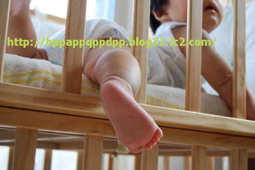 DSC_0245_convert_20080719225058.jpg