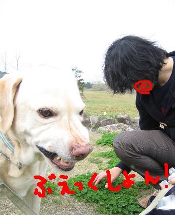 200804044幸せ