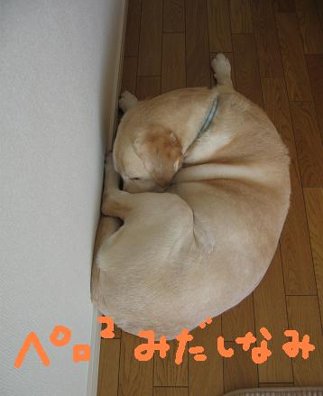 200804034おつかれ