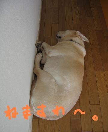 20080405おつかれ