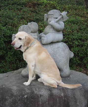 200804193日本