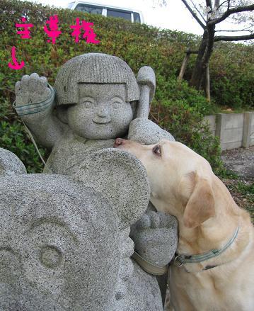 200804195日本