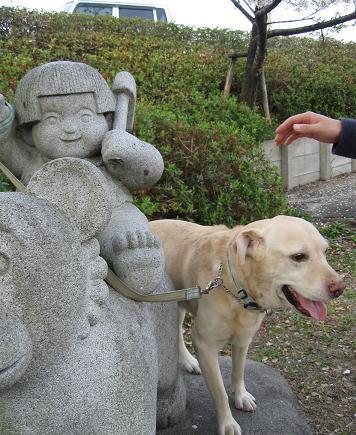 200804198日本