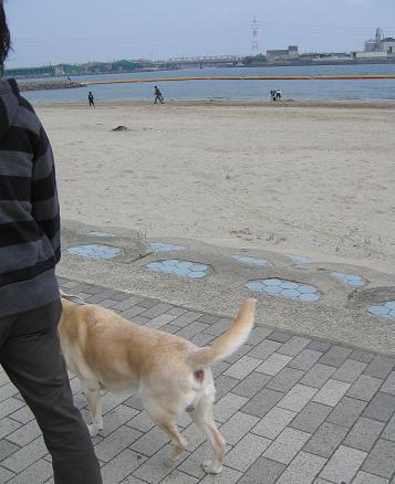 200804201海