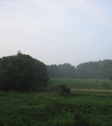 200808102景色