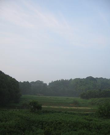 200808104景色