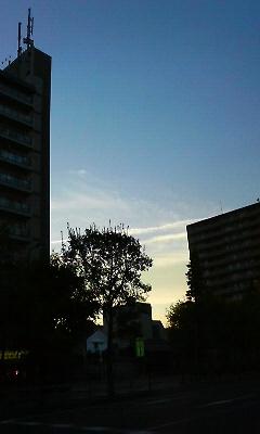 20080726185140.jpg
