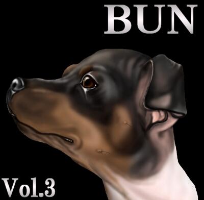 BUN8-1.jpg