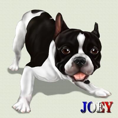 JOEY40.jpg