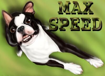 MAX54-2.jpg