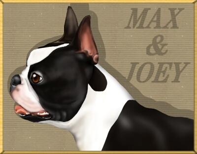 MAX56-1.jpg