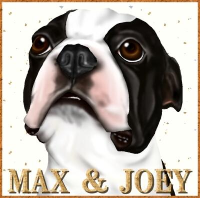 MAX58-1.jpg