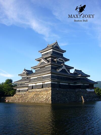 松本城の光と影