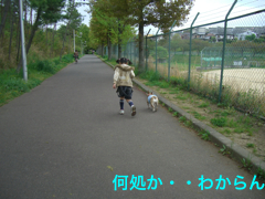 CIMG4279.jpg