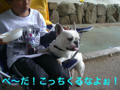 CIMG4292.jpg